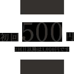 初回500円2回目以降は1,000円です 各レッスン、合計3回までレッスンを受けて頂けます。